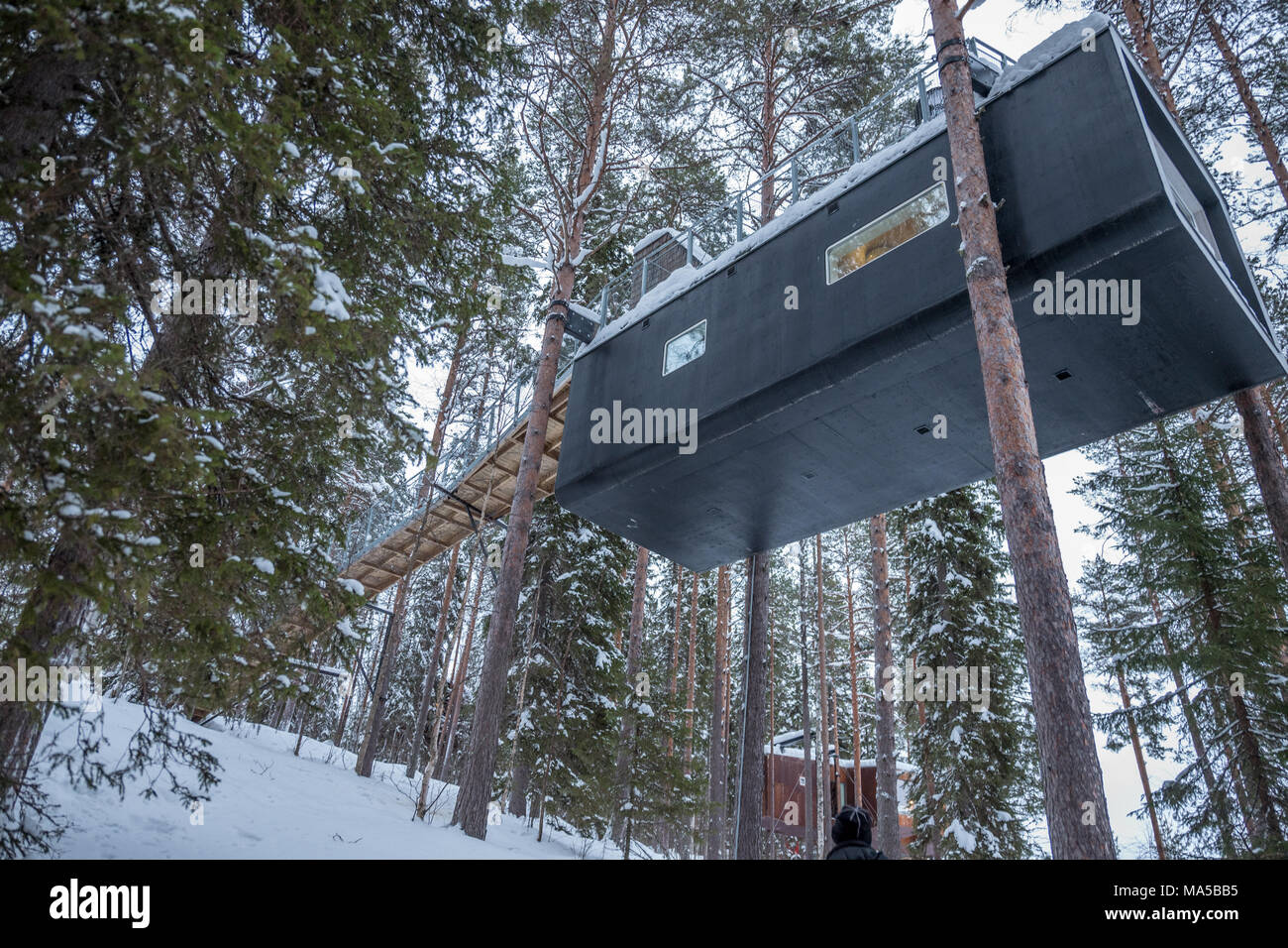 Tree Hotel In Harads Sweden Stock Photo 178368937 Alamy