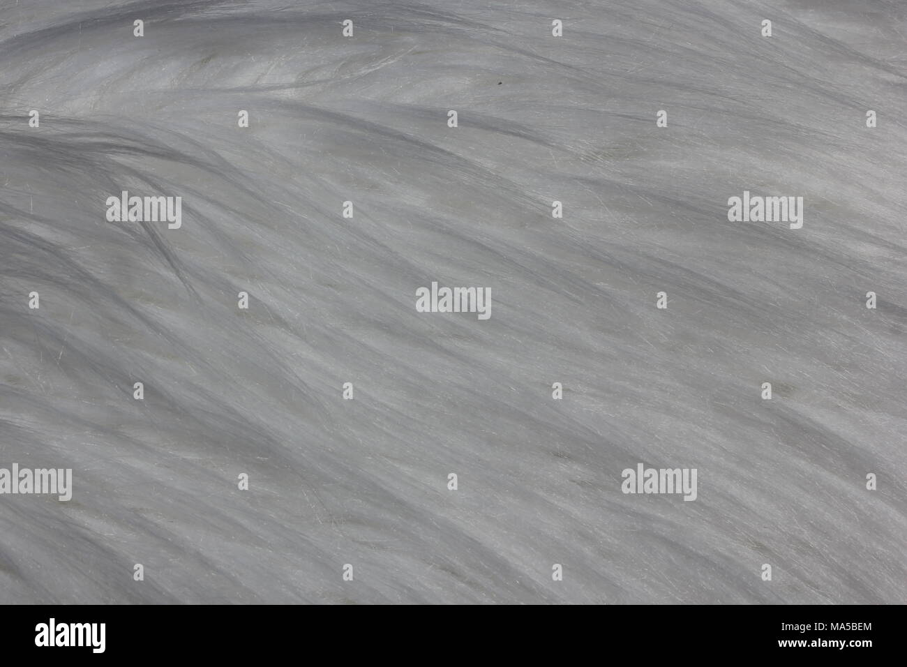 Close-up of a white imitation fur rug that serves well as a background for memes. - Stock Image