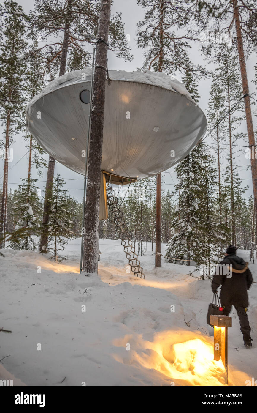 Tree Hotel In Harads Sweden Stock Photo 178369080 Alamy