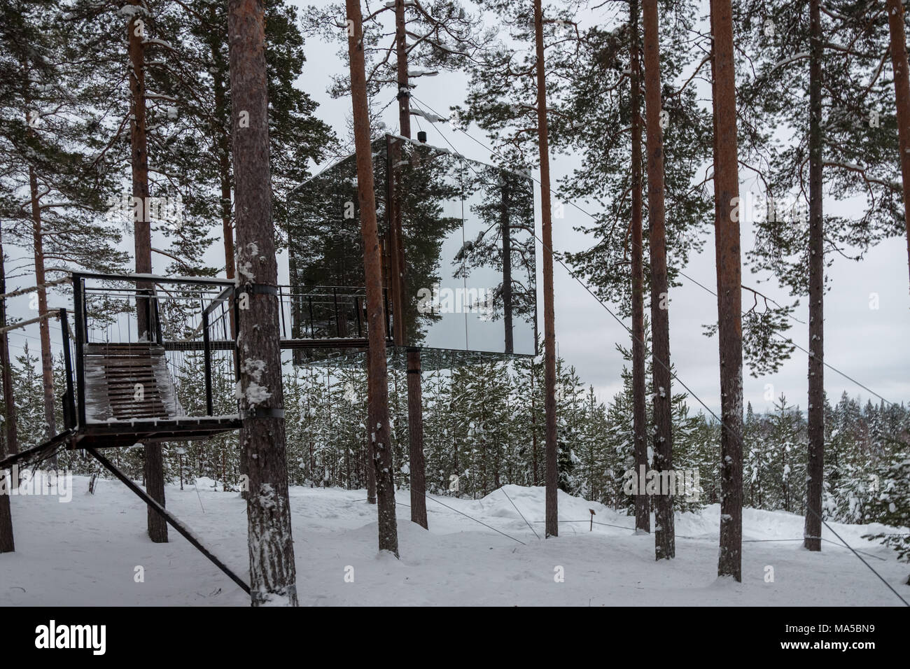 Tree Hotel In Harads Sweden Stock Photo 178369221 Alamy