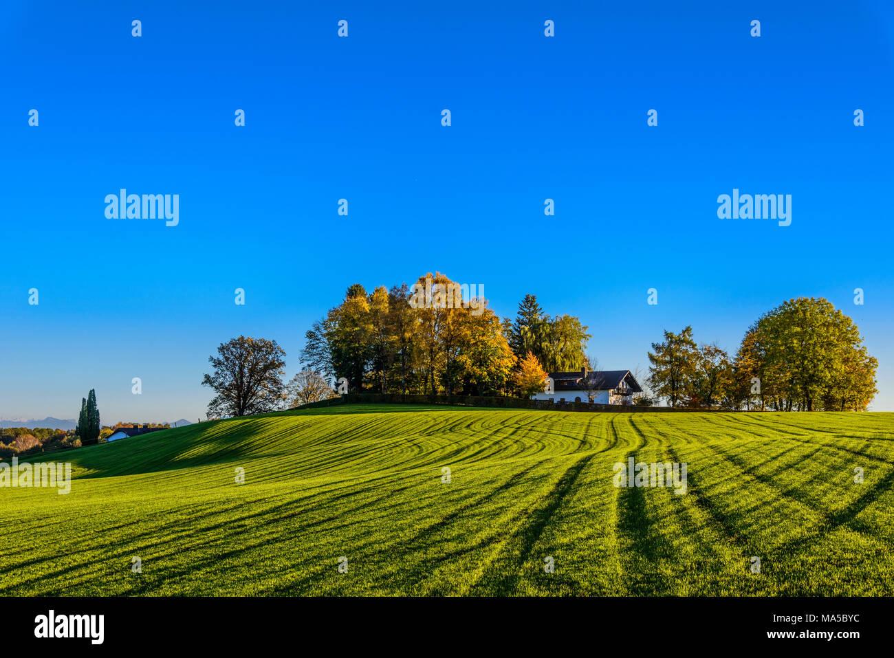 Germany, Bavaria, Upper Bavaria, Ebersberg, mowing structure on Egglburger See Stock Photo