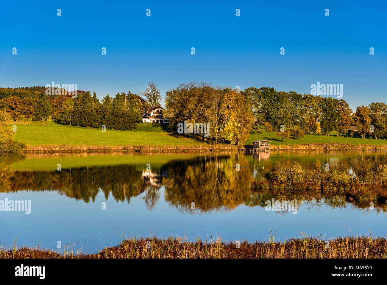 Germany, Bavaria, Upper Bavaria, Ebersberg, Egglburger See (lake) Stock Photo
