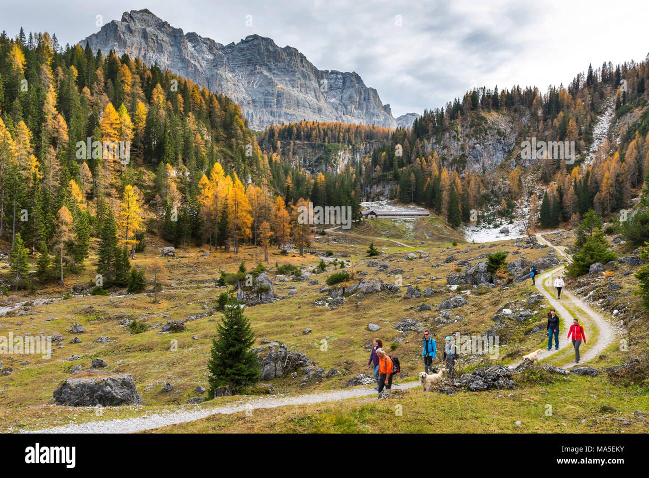 Walking tourists at the Pozzoi mountain range Europe, Italy, Trentino Alto Adige, Trento district, Non Valley, Ville d'Anaunia - Stock Image