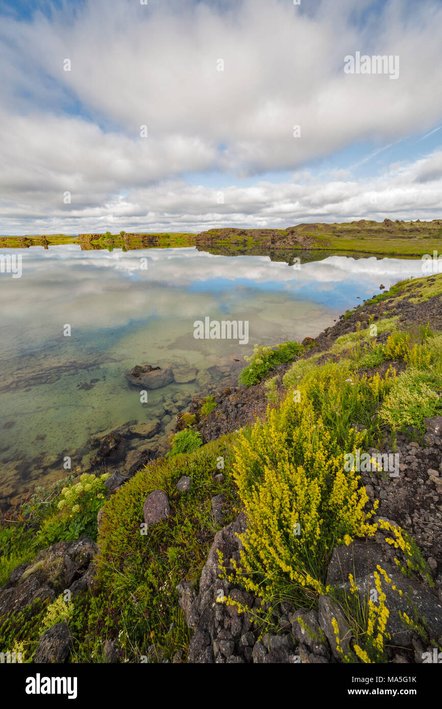 Water reflections in eastern Iceland, Austurland,Iceland Stock Photo
