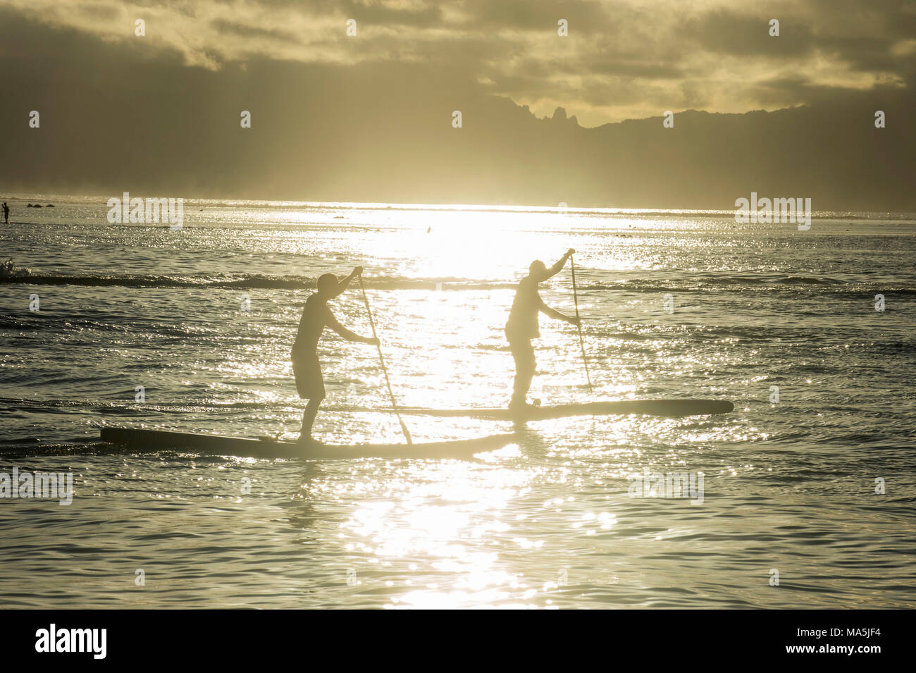Stand up paddlers working out at sunset, Papeete, Tahiti, French Polynesia - Stock Image