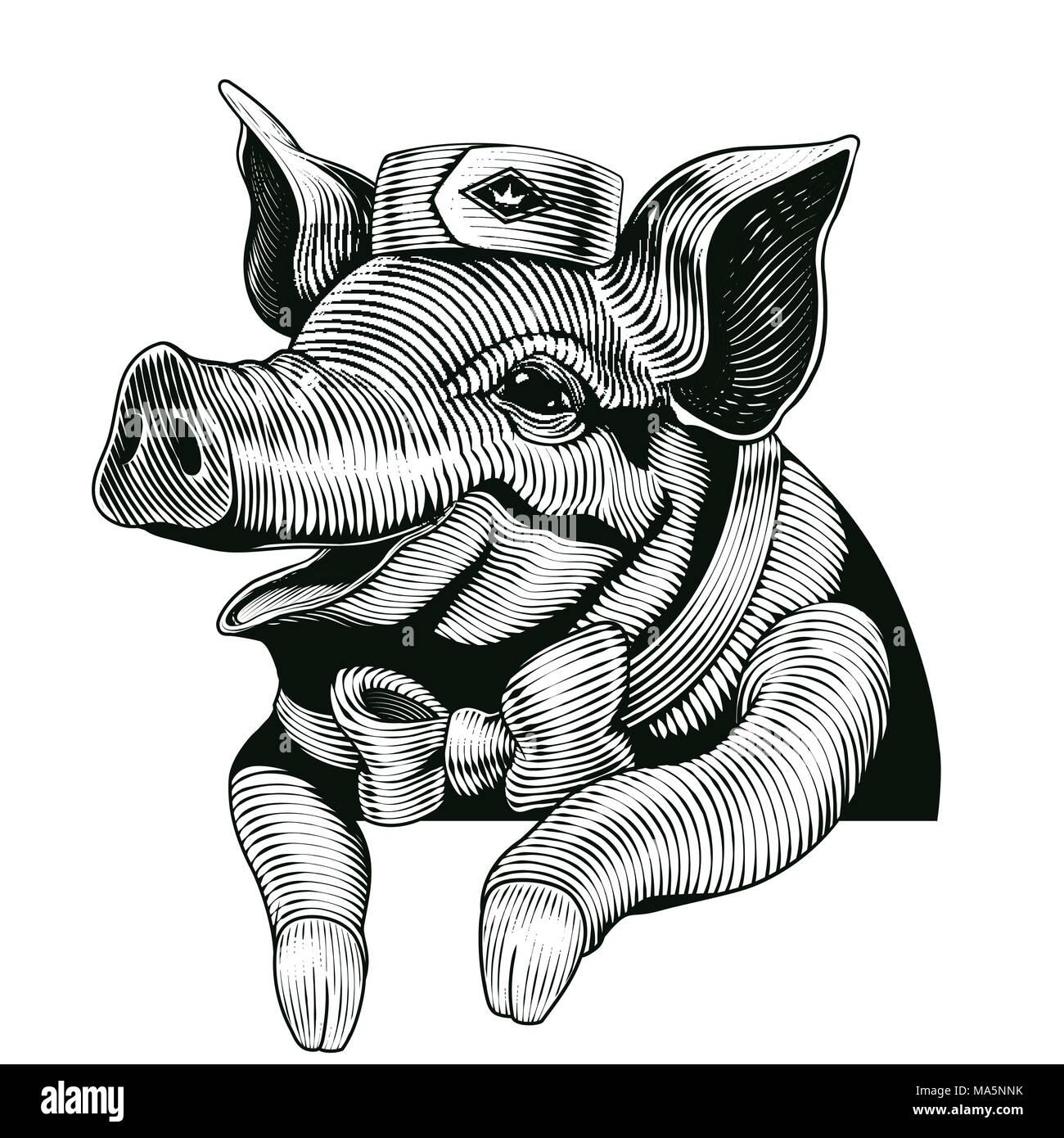 Engraving style pig, smiling pig design elements for delicatessen shop Stock Vector