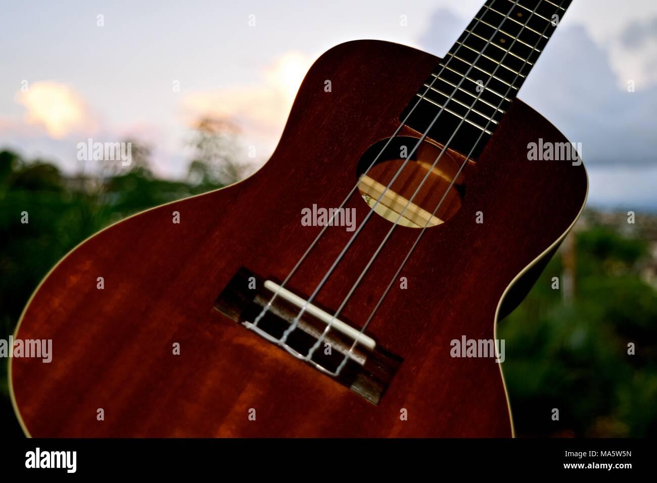 guitar like stock photos guitar like stock images alamy. Black Bedroom Furniture Sets. Home Design Ideas