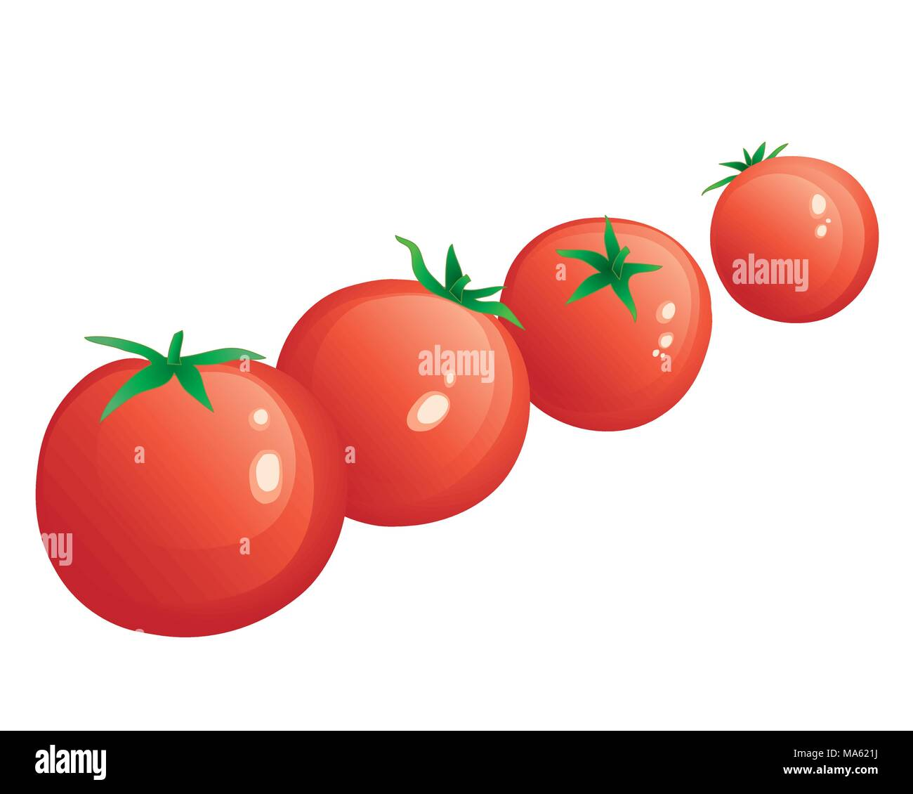 a vector illustration in eps 10 format of a row of freshly picked red cherry tomatoes isolated on a white background - Stock Vector