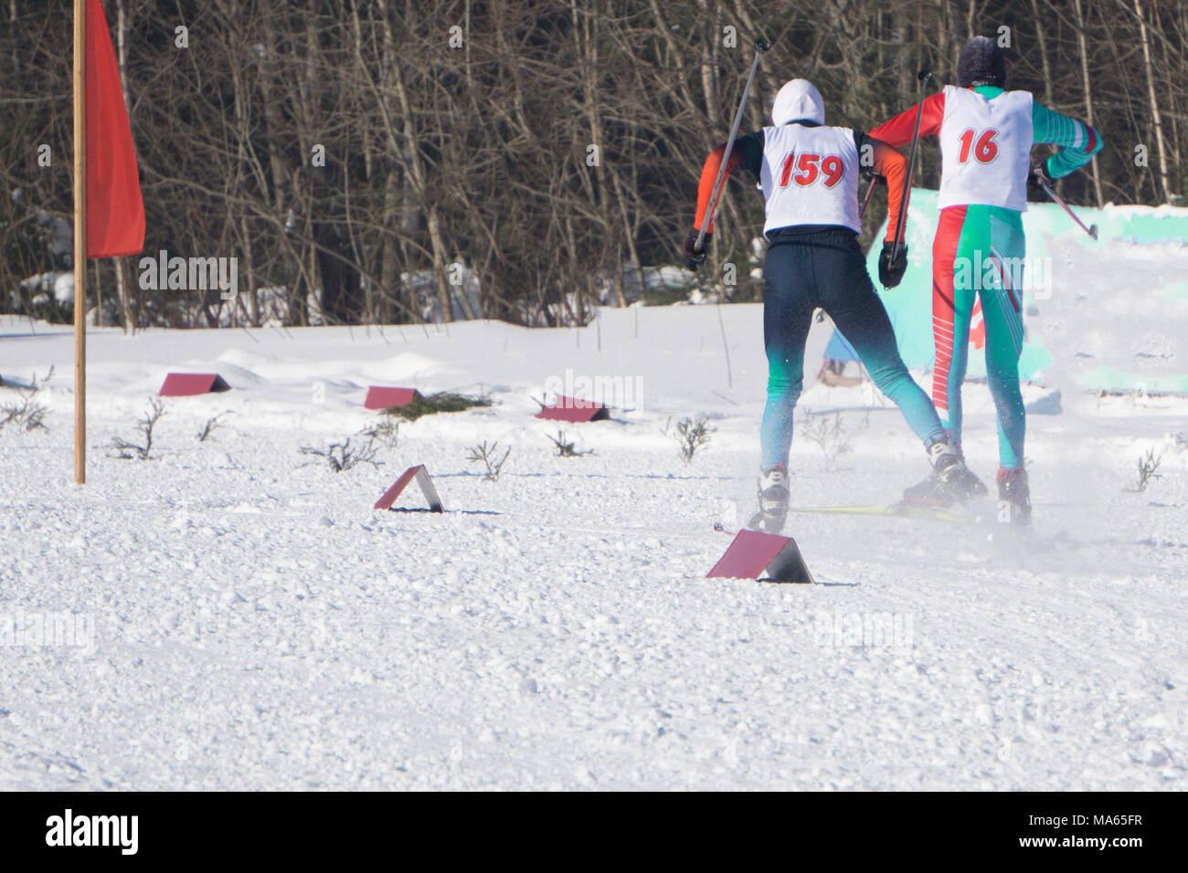 start group of skiers athletes sport of cross-country skiing - Stock Image