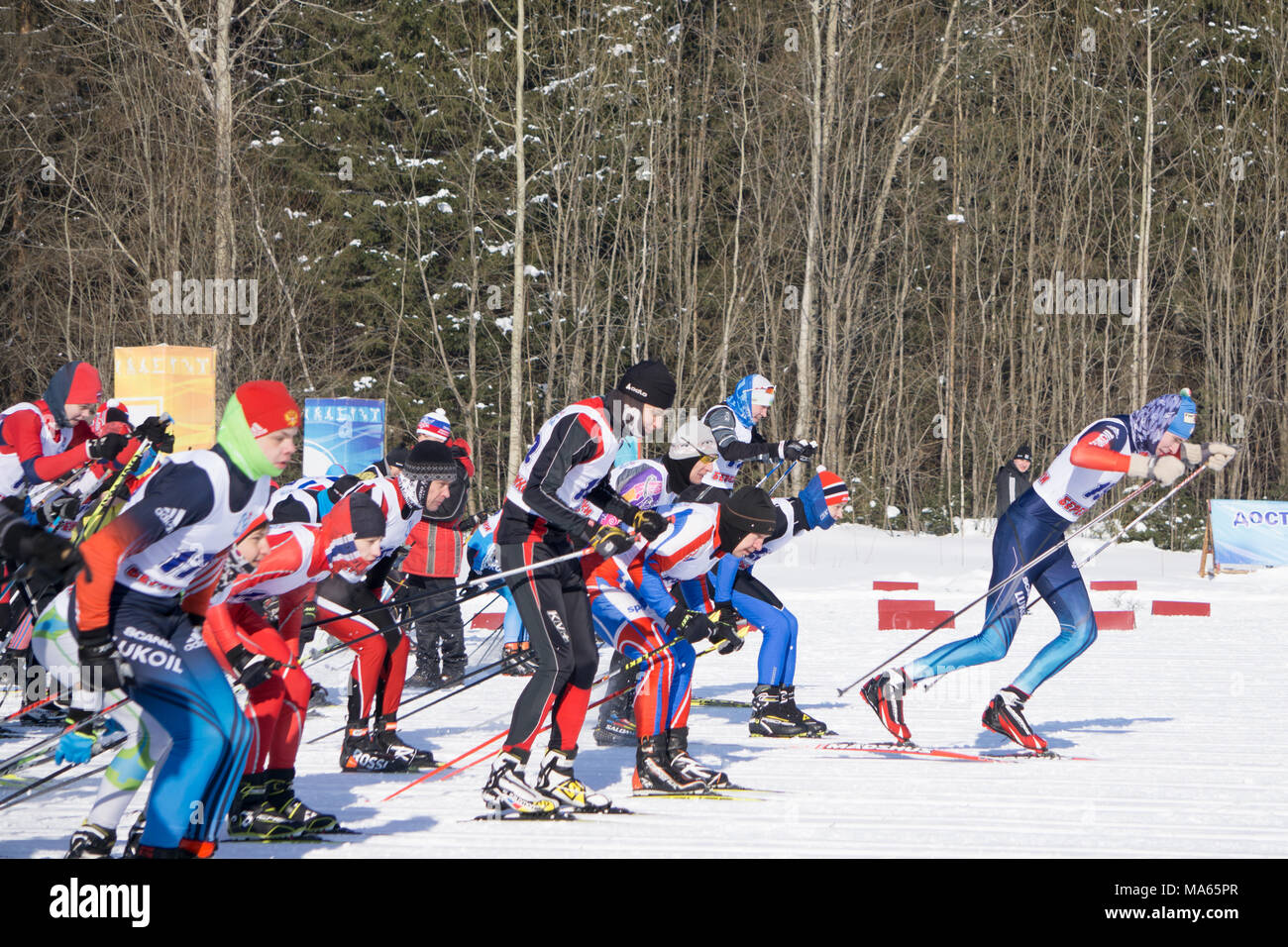 Russia Berezniki March 11, 2018: the first seconds of the start the participants of the traditional mass ski competitions ski track. - Stock Image