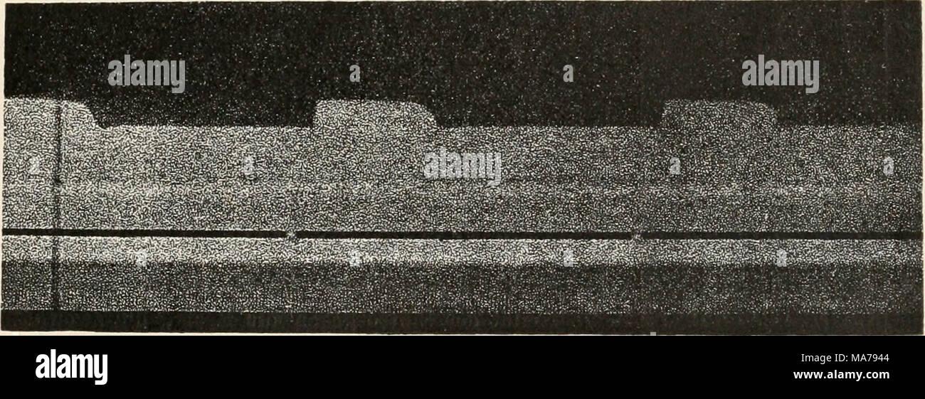 Dabei Stock Photos & Dabei Stock Images - Page 6 - Alamy