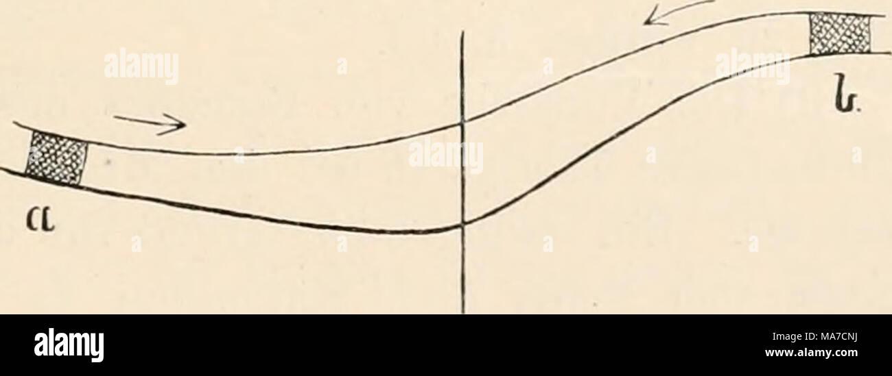 Berühmt Diagramm Von A Galerie - Der Schaltplan - raydavisrealtor.info