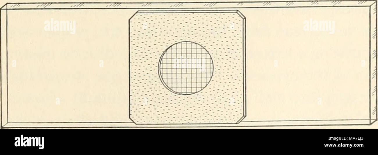 . Elementary chemical microscopy . Fig. 128. Girard Counting Cell for the Analysis of Flour. not always clear when the particles to be counted are in focus; the relatively large size of the ruled squares with a high power; 1 Made by Nachet et Fils, Paris, France. - Stock Image