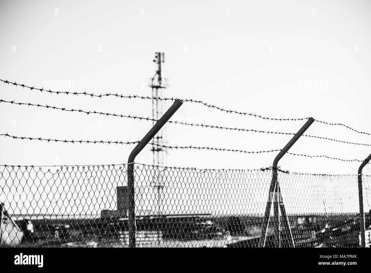 barbed wire fence security - Stock Image
