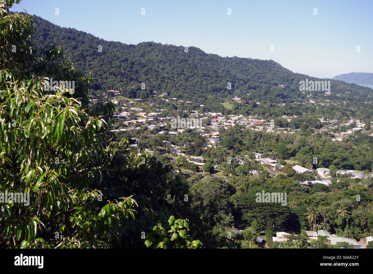 View over leafy suburbs of Whitfield and Edge Hill from Green Arrow walking track up Mt Whitfield, Cairns, Queensland, Australia. No PR - Stock Image