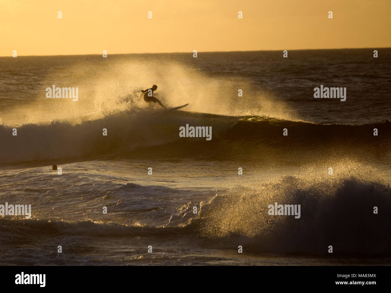 Surfing at Pipeline, North shore of Oahu - Stock Image