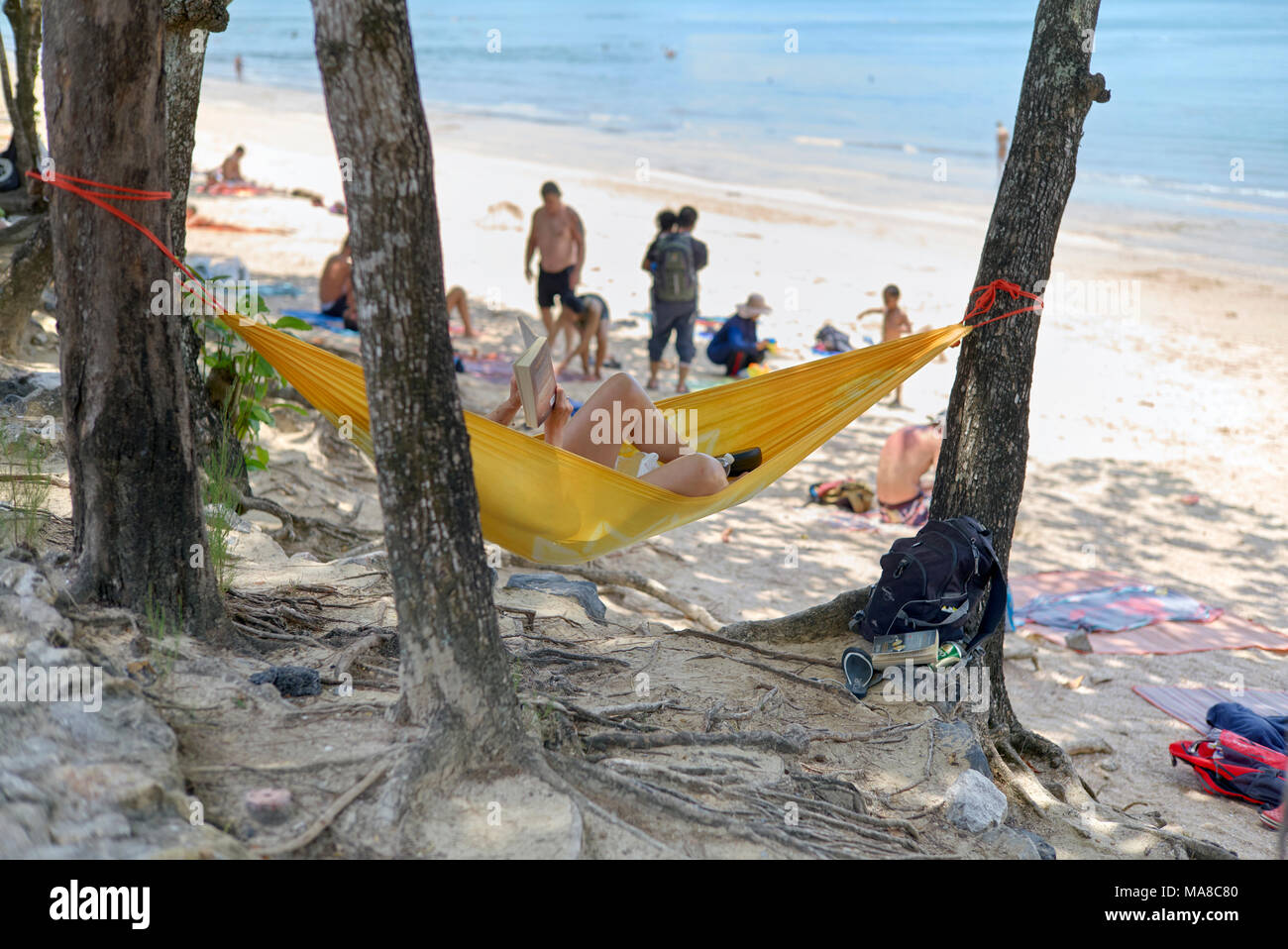 Woman relaxing in a hammock strung between the tress at Ao Nang beach Krabi Thailand - Stock Image