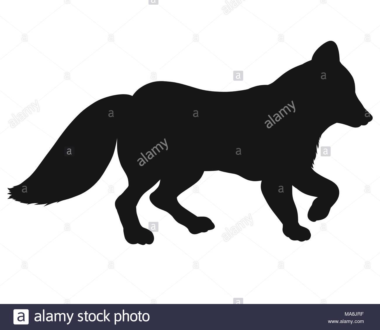 Black silhouette of a walking fox - Stock Image
