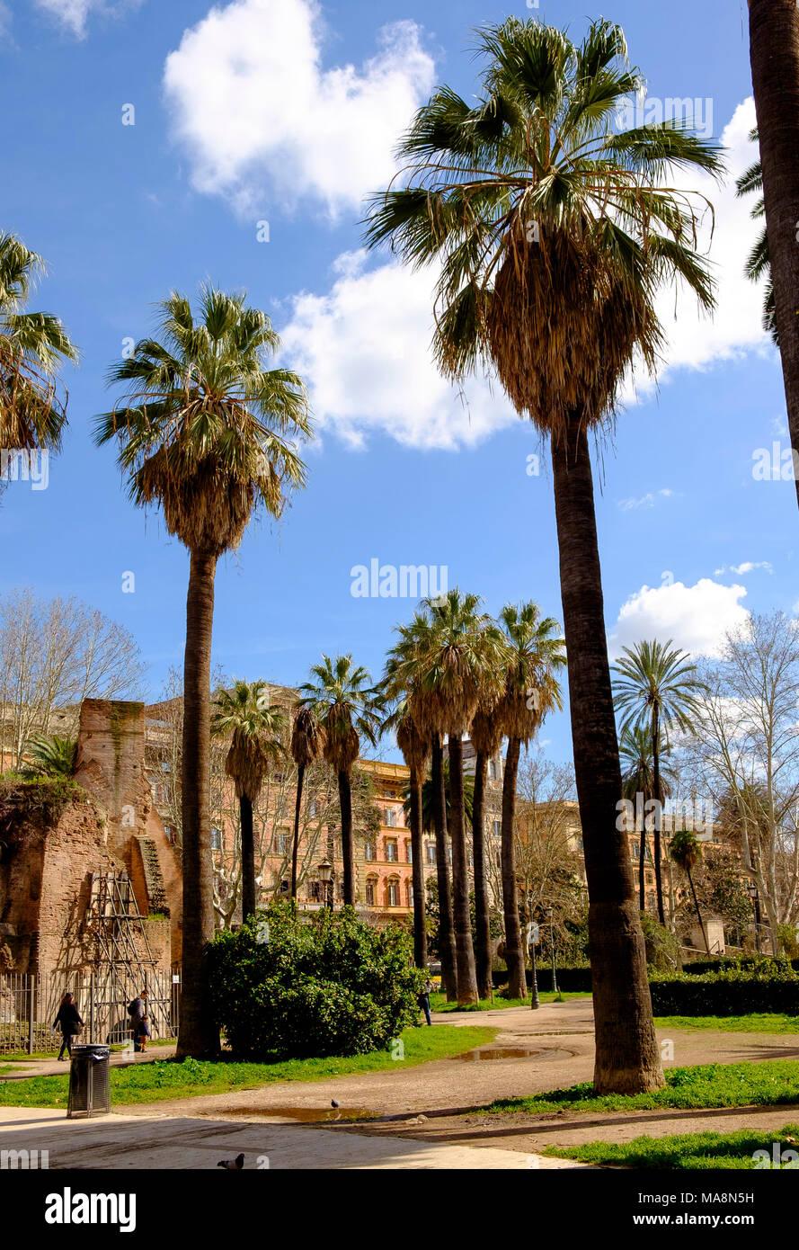 Giardini garden stock photos giardini garden stock for Garden giardini