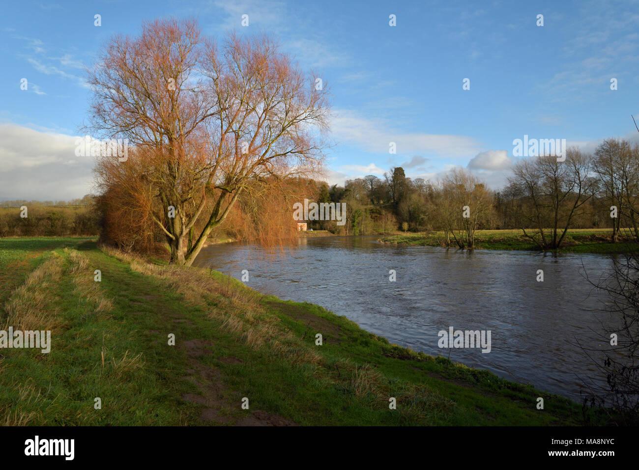 The River Wye in sun near The Warren, Hay on Wye - Stock Image