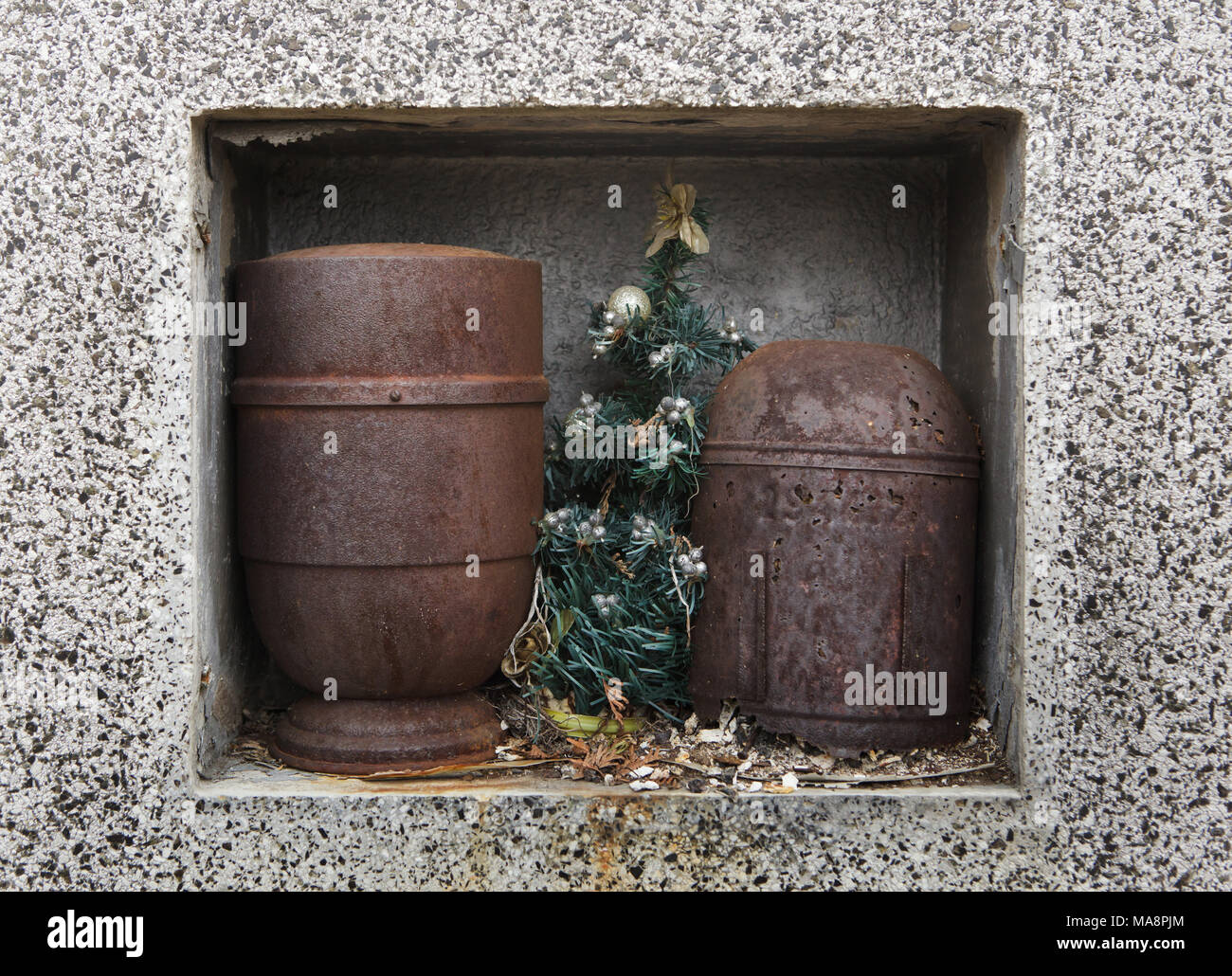 Christmas tree between two rusty funerary urns at the abandoned grave at Slivenec Cemetery in Prague, Czech Republic. - Stock Image