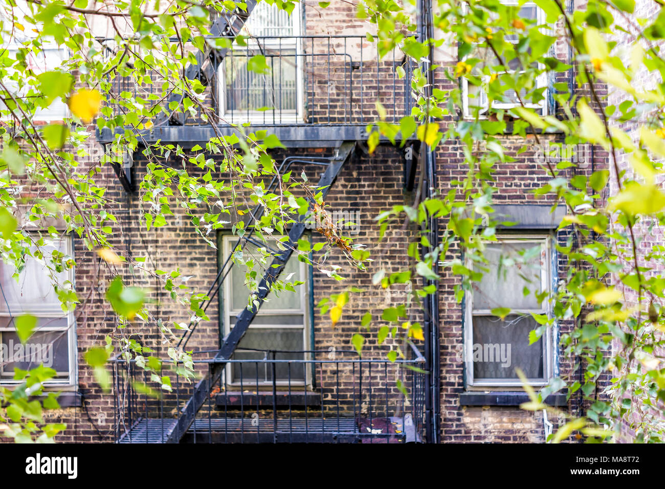 Brick Apartment Condo Building Exterior Architecture In Chelsea Nyc Manhattan New York City With Fire Escapes Windows Green Tree Leaves Stock Photo Alamy
