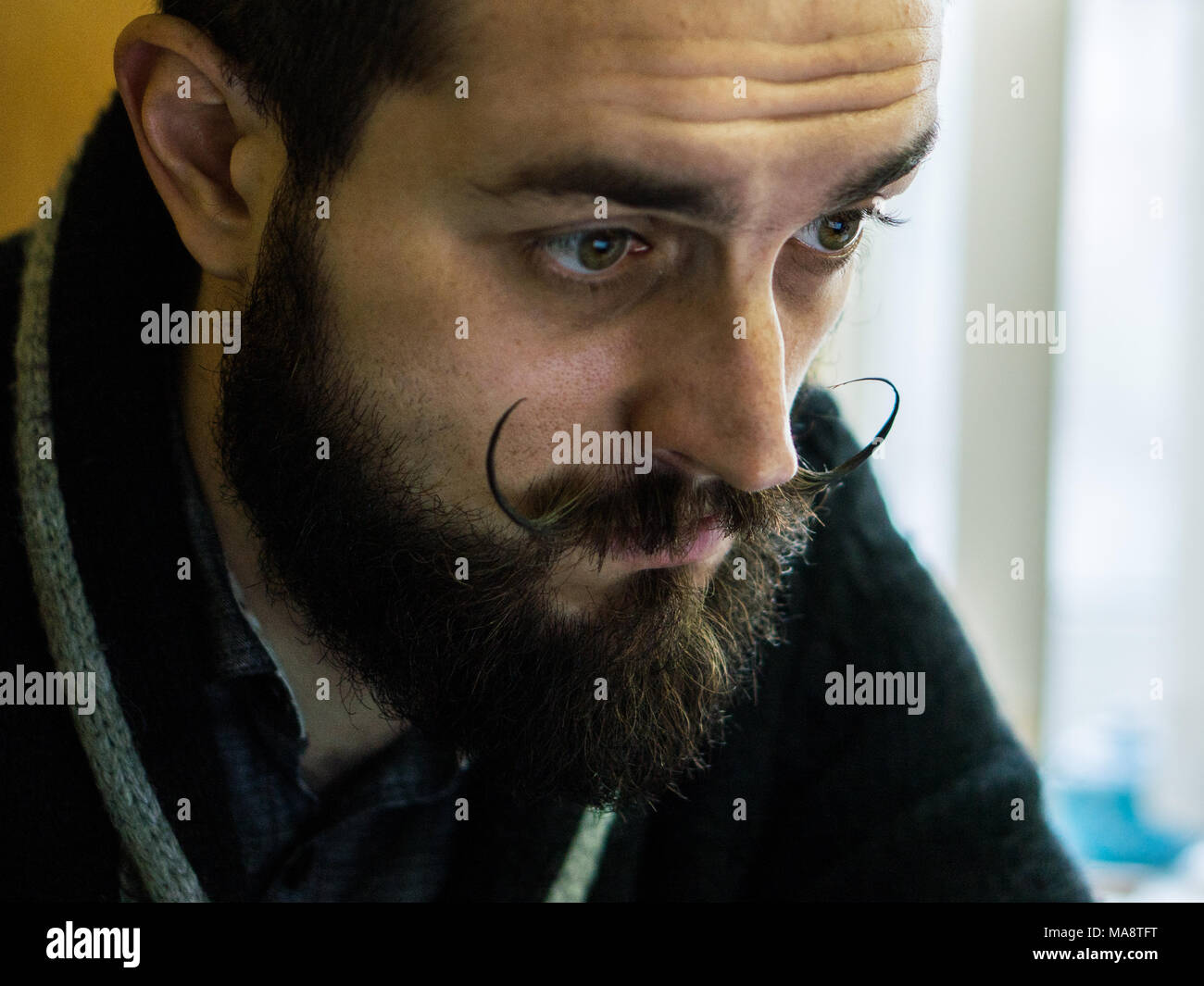 Modern, Expressive Bearded Office Clerk with Mustages Working with Notebook at Office - Stock Image