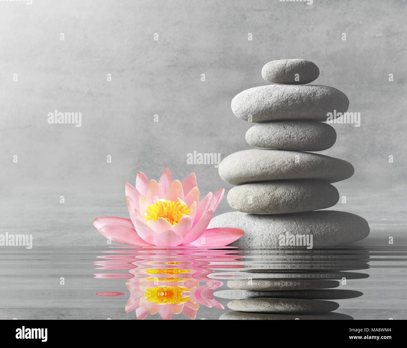 Spa flower stones water stock photos spa flower stones water stock stones and pink flower lotus balance zen and spa concept stock image izmirmasajfo