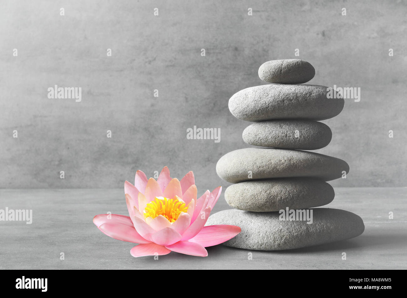 Stones and pink flower lotus balance. Zen and spa concept. - Stock Image