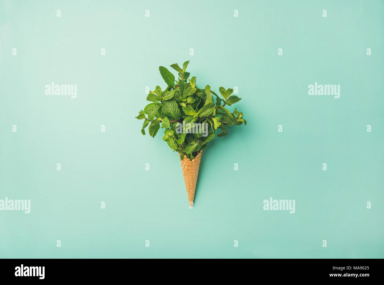 Waffle cone with fresh mint - Stock Image