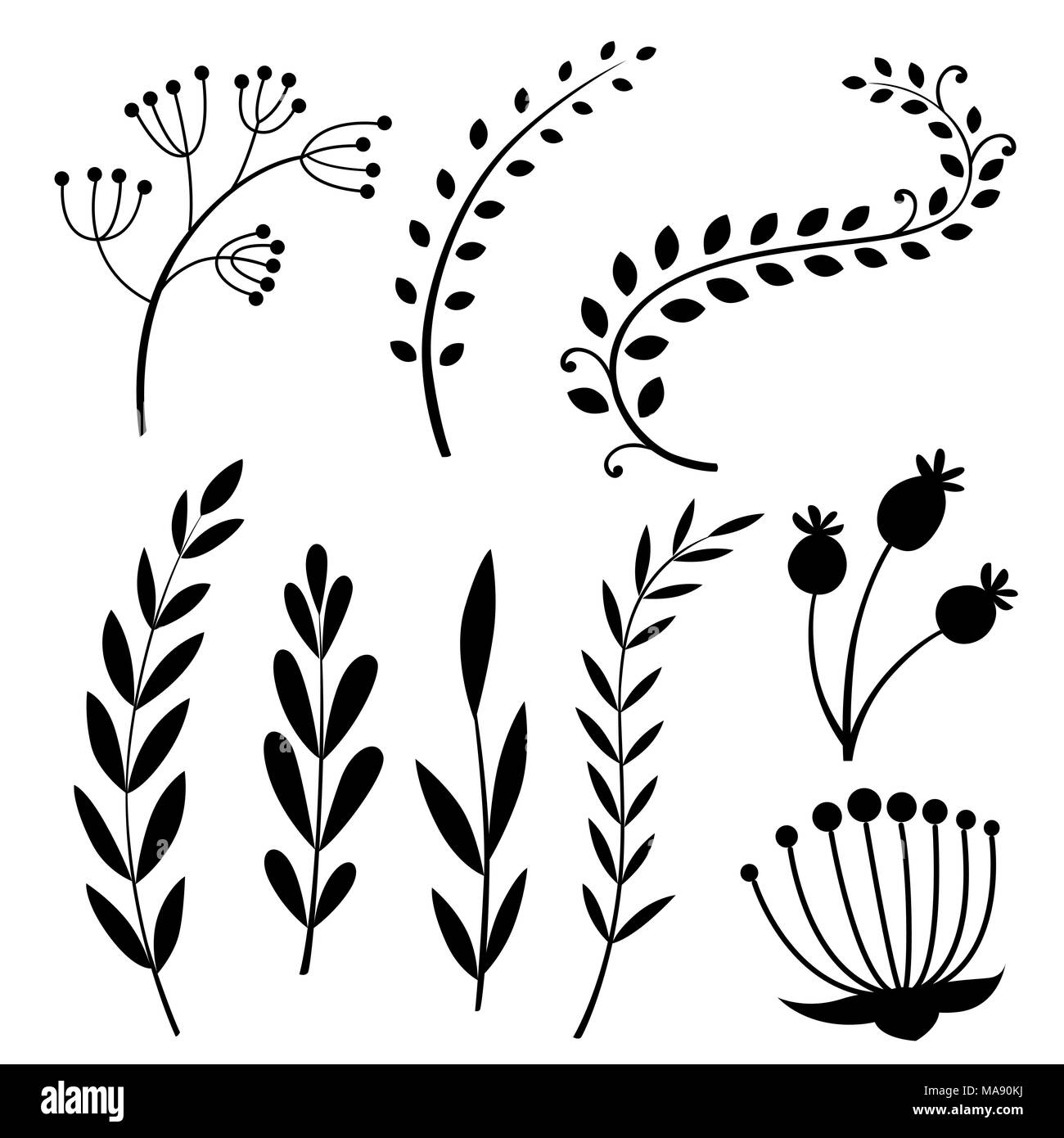 Set Of Black Flower Design Elements From My Big Floral: Black Silhouette. Set With Floral Elements And Leaves
