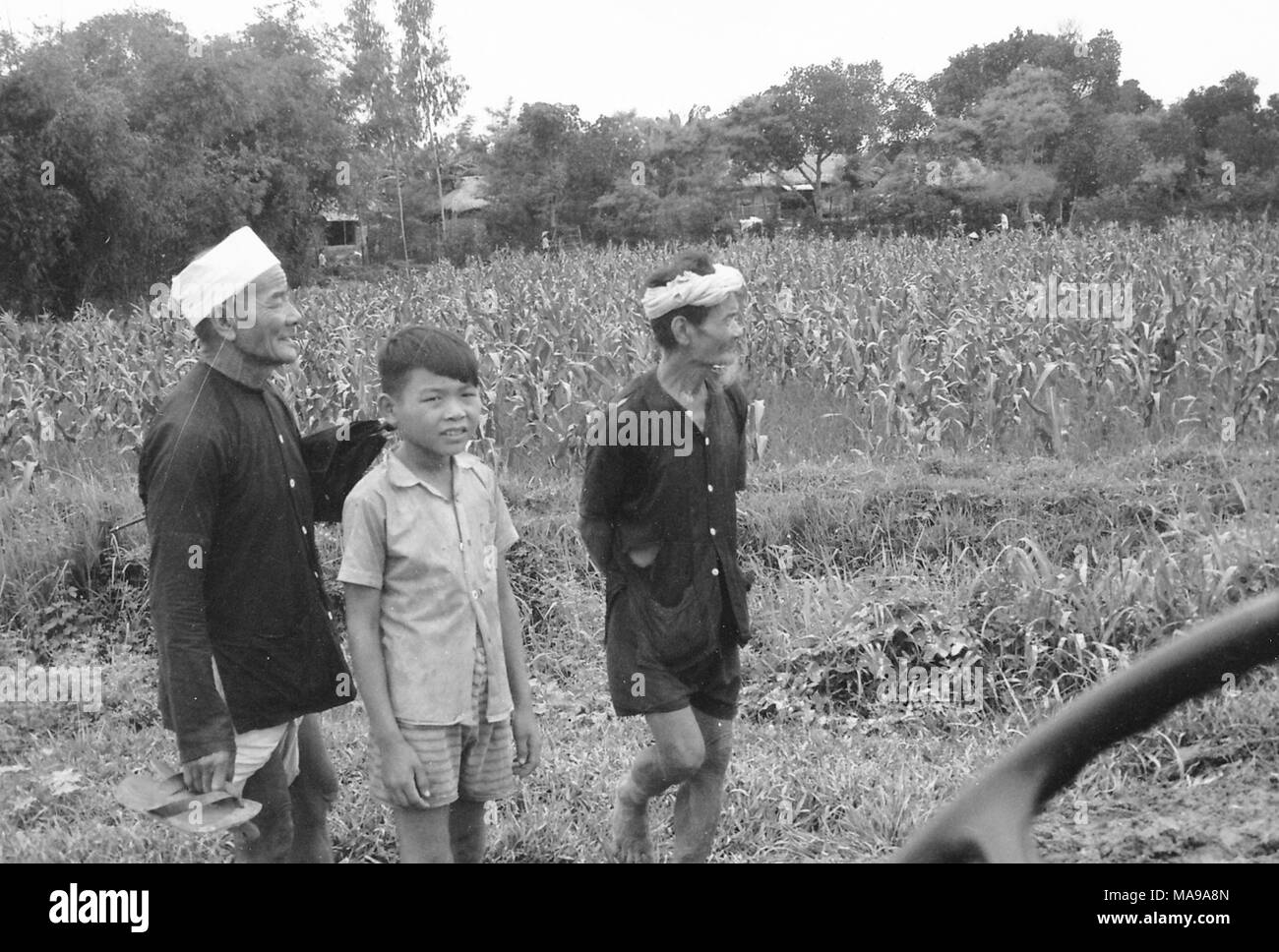 Black and white photograph showing three Vietnamese males, one boy wearing shorts, and two older men wearing long sleeve shirts, one wearing a hat and the other a bandana, standing in front of a field, with trees and houses in the background, photographed in Vietnam during the Vietnam War (1955-1975), 1968. () Stock Photo