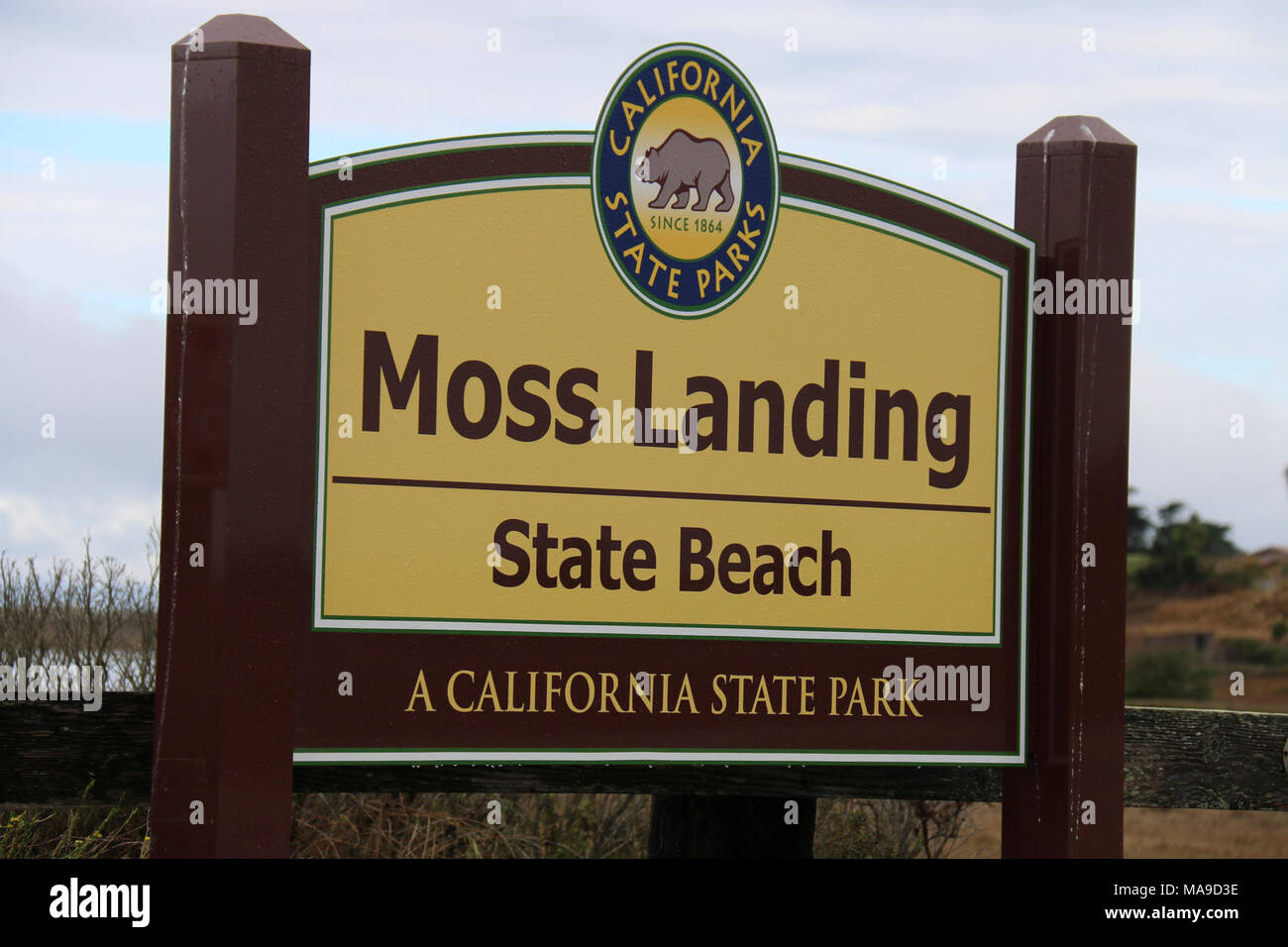 Moss Landing State Beach. Sea otters can frequently be found off the shores of Moss Landing State Beach. Stock Photo