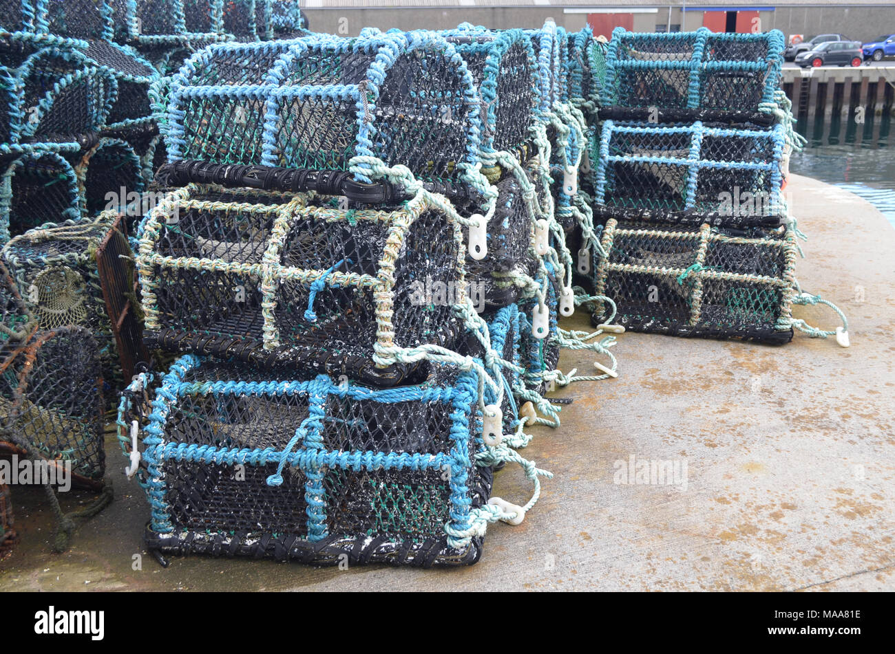 Crab creels in the fishing harbour of Kirkwall, capital of Orkney (Scotland) - Stock Image