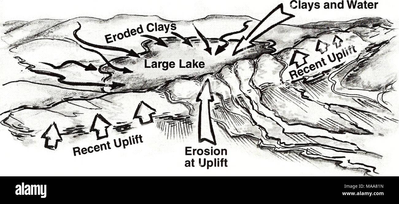 . Ecuador, Perú : Cuyabeno-Güeppí . Present-day Blackwater Lake Complex A Drained Lake - Stock Image