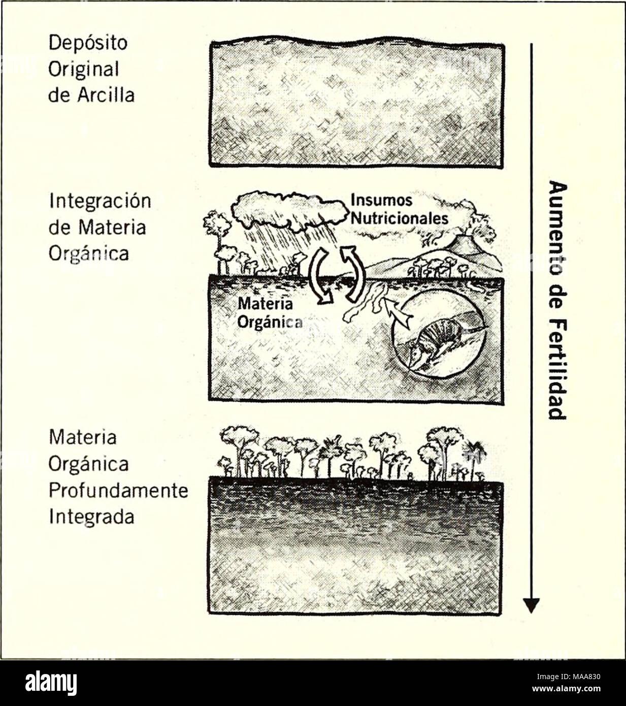 . Ecuador, Perú : Cuyabeno-Güeppí . 72 RAPID BIOLOGICAL AND SOCIAL INVENTORIES INFORME/REPORT NO. 20 - Stock Image
