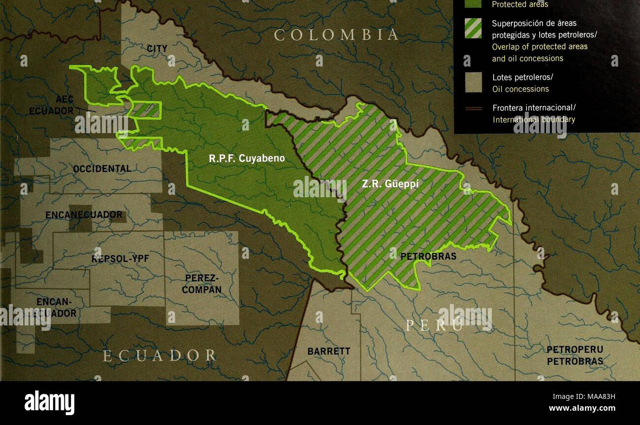 . Ecuador, Perú : Cuyabeno-Güeppí . und on I new nteriors or flora itation pezado :lay River, burned 15-15 years ago, has barely begun to recover. FIG. lOB Evidencia de actividad maderera ilegal (una Cedrela odorata tableada) en el propuesto P.N. Güeppí en Perú, cerca de Colombia./ Evidence of illegal logging (a Cedrela odorata cut for planks) in tlie proposed P.N. Gijeppi in Peru, near Colombia. FIG. IOC Un lote petrolero recientemente asignado a Petrobras se superpone totalmente con la Z.R. Güeppí en Perú; otras concesiones se superponen parcialmente con la R.RF. Cuyabeno en Ecuador./ A rece - Stock Image