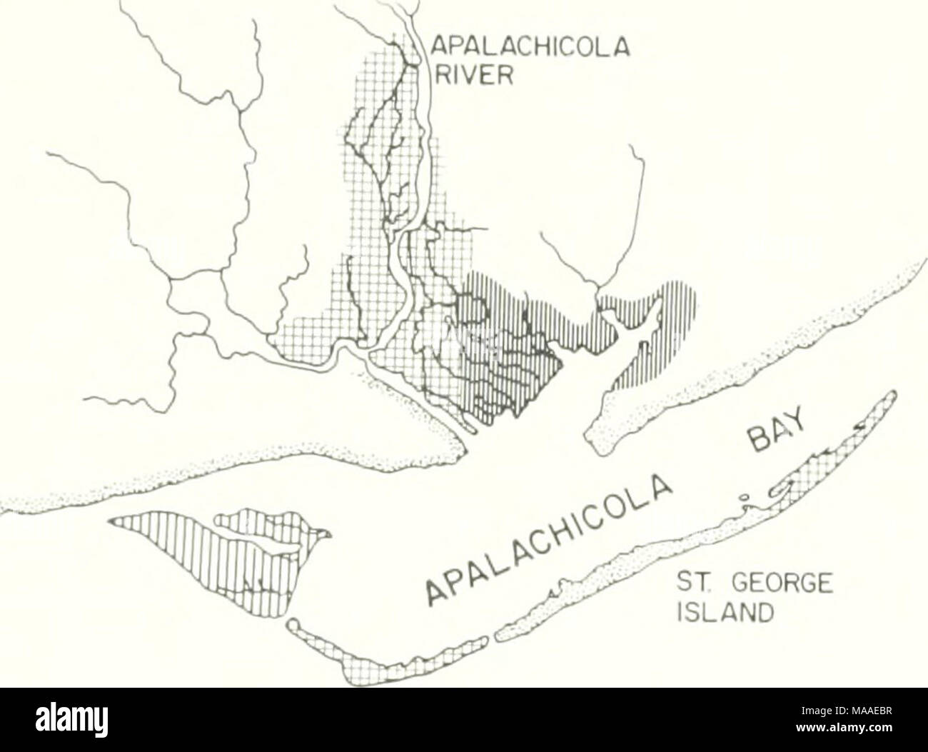 Regional Court Council Stock Photos Ell Br Door Wiring Diagram The Ecology Of Apalachicola Bay System An Estuarine Profile St George Island
