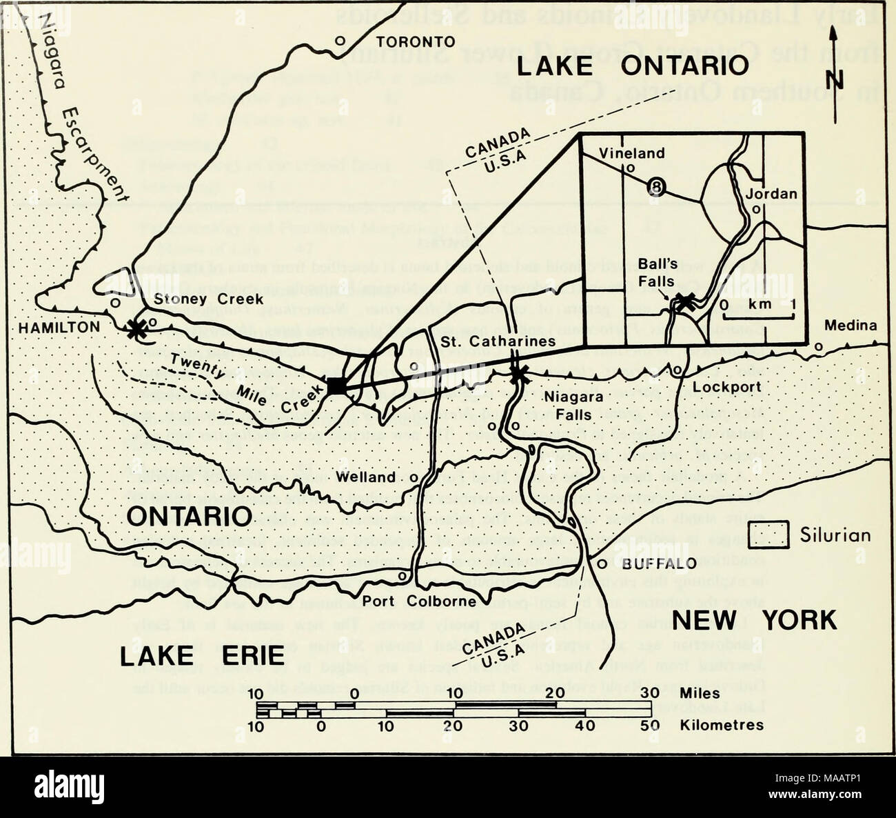 . Early Llandovery crinoids and stelleroids from the Cataract Group (Lower Silurian) in southern Ontario, Canada . Text-fig. 1 Locality map of southwestern Ontario and western New York State showing occurrences (x) of echinoderms in the Cataract Group. Twelve Mile Creek. Brower (1966) described Calceocri- nus pustulosus from the Manitoulin Formation at Stoney Creek. Brett (1978a) described Ptychocrinus medinensis from the lower Medina Group in the Niagara Gorge near Lewiston in New York State. Materials and Methods A complete section of the Cabot Head Formation is exposed in the gorge below th Stock Photo