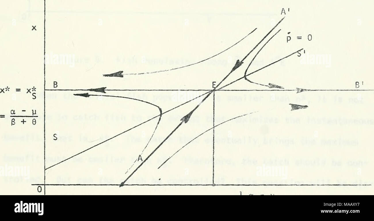 Dynamic theory of fisheries economics optimal control theoretic dynamic theory of fisheries economics optimal control theoretic approach r s e b b2b r e i a p figure 3 phase diagram for competitive case ccuart Images