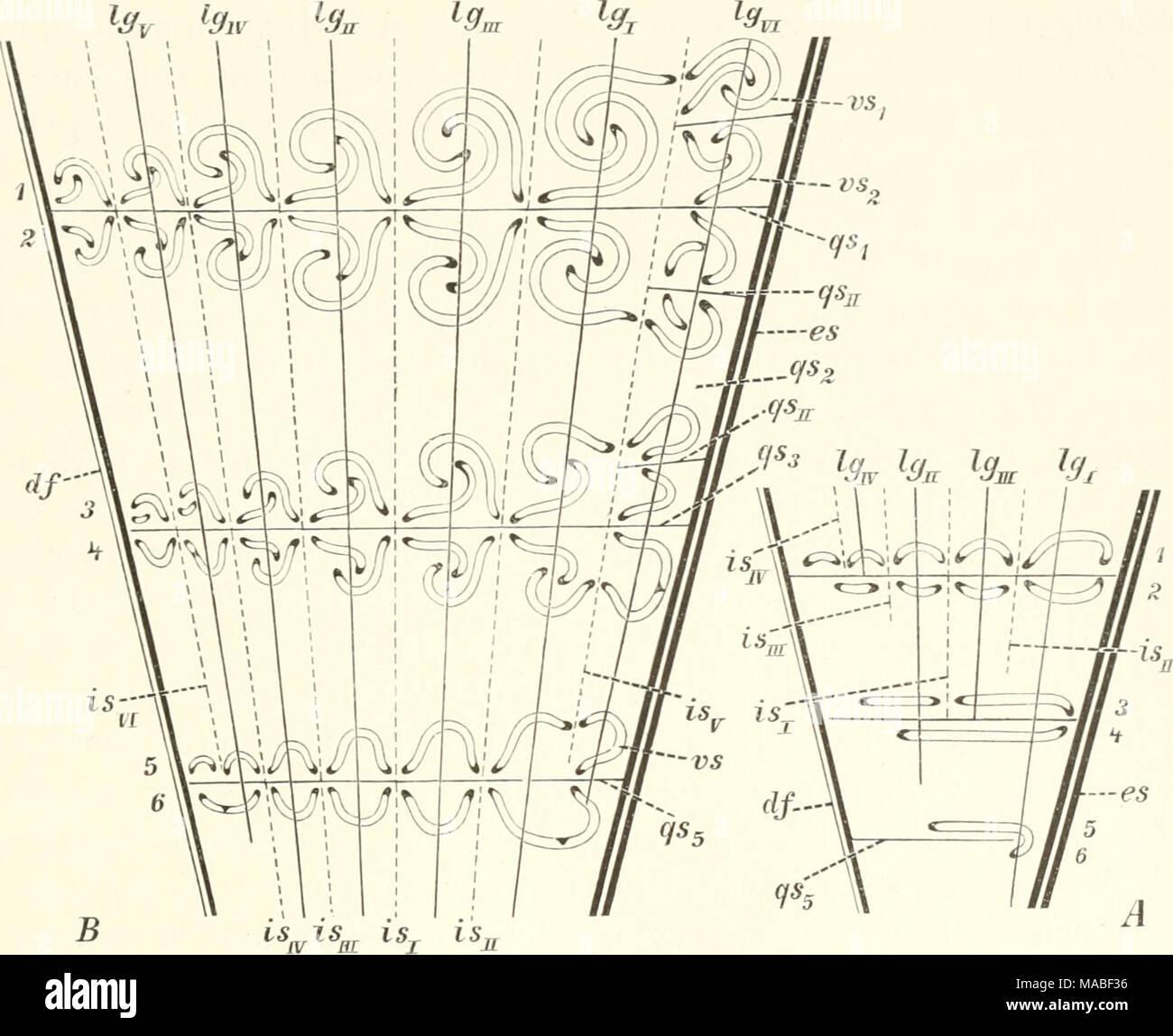 Schematische Stock Photos & Schematische Stock Images - Page 3 - Alamy