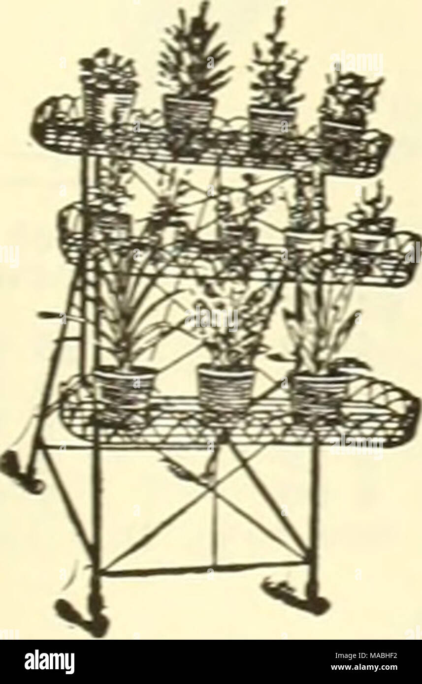 Dreer\'s wholesale price list for florists . Plant Stand, Wire. A ...