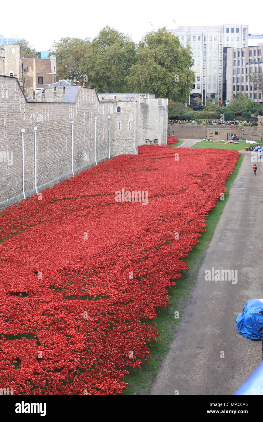 Blood Swept Lands and Seas of Red was a work of installation art placed in the moat of the Tower of London, England, 2014, UK, PETER GRANT Stock Photo