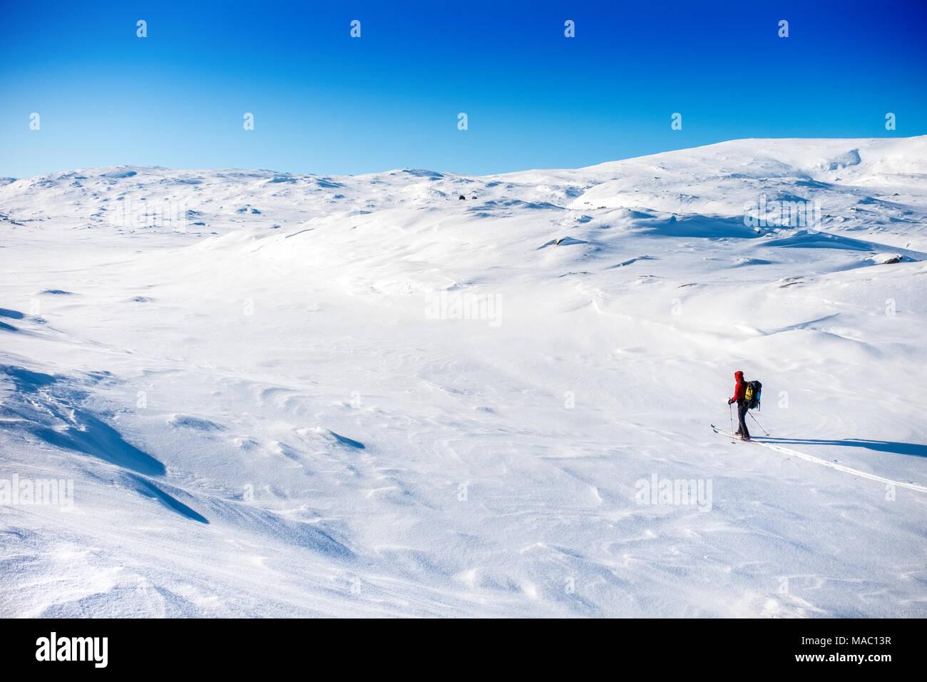 A single ski tourer in Northern Sweden - Stock Image