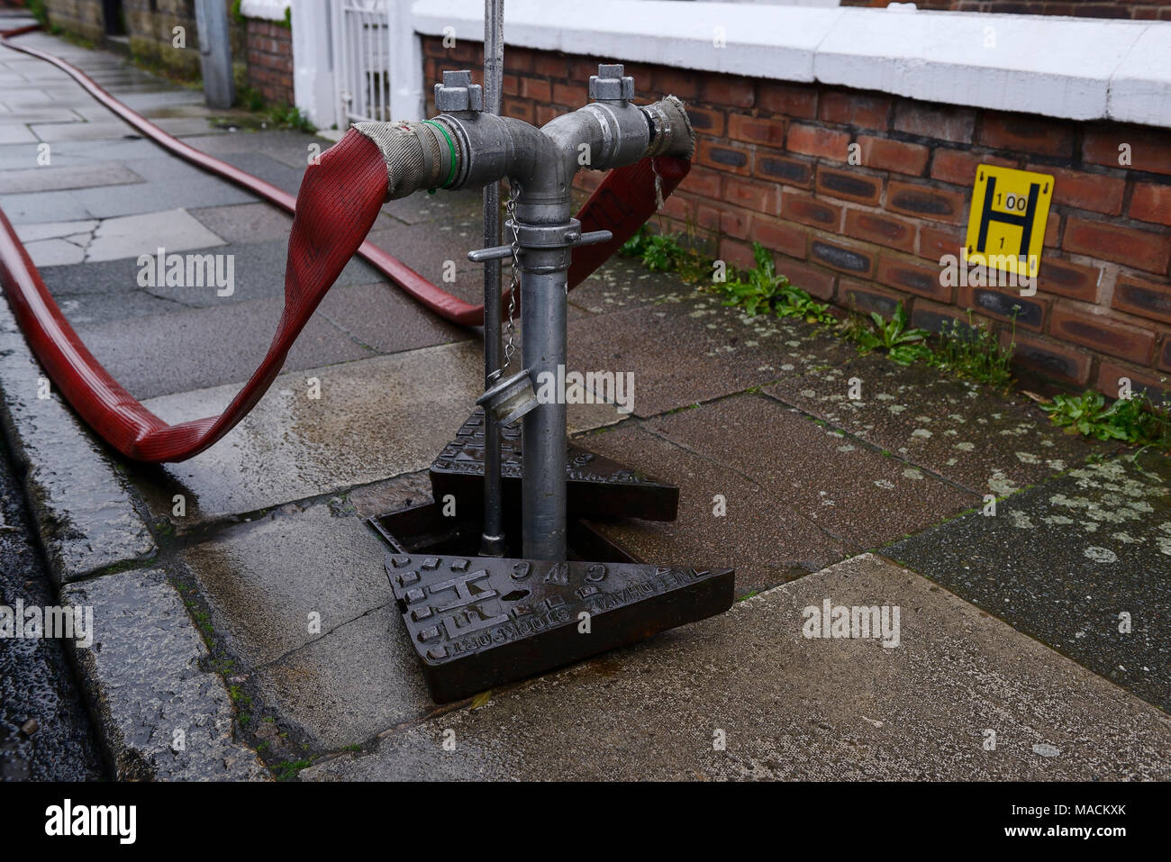 A fire hydrant in the pavement with hoses attached - Stock Image