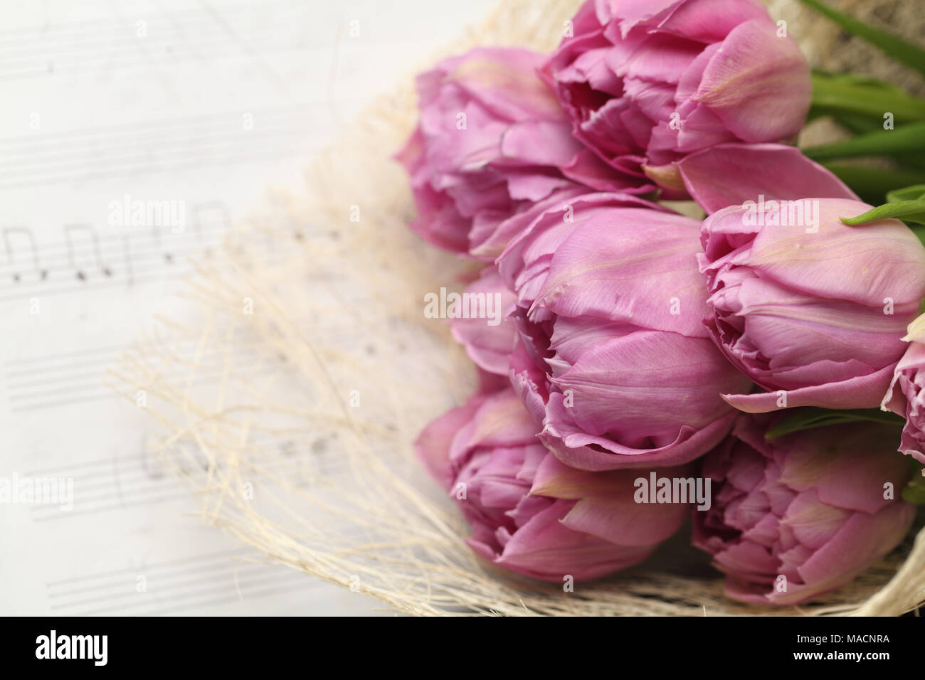 Beautiful Tulip Flowers On Note Paper Background Stock Photo