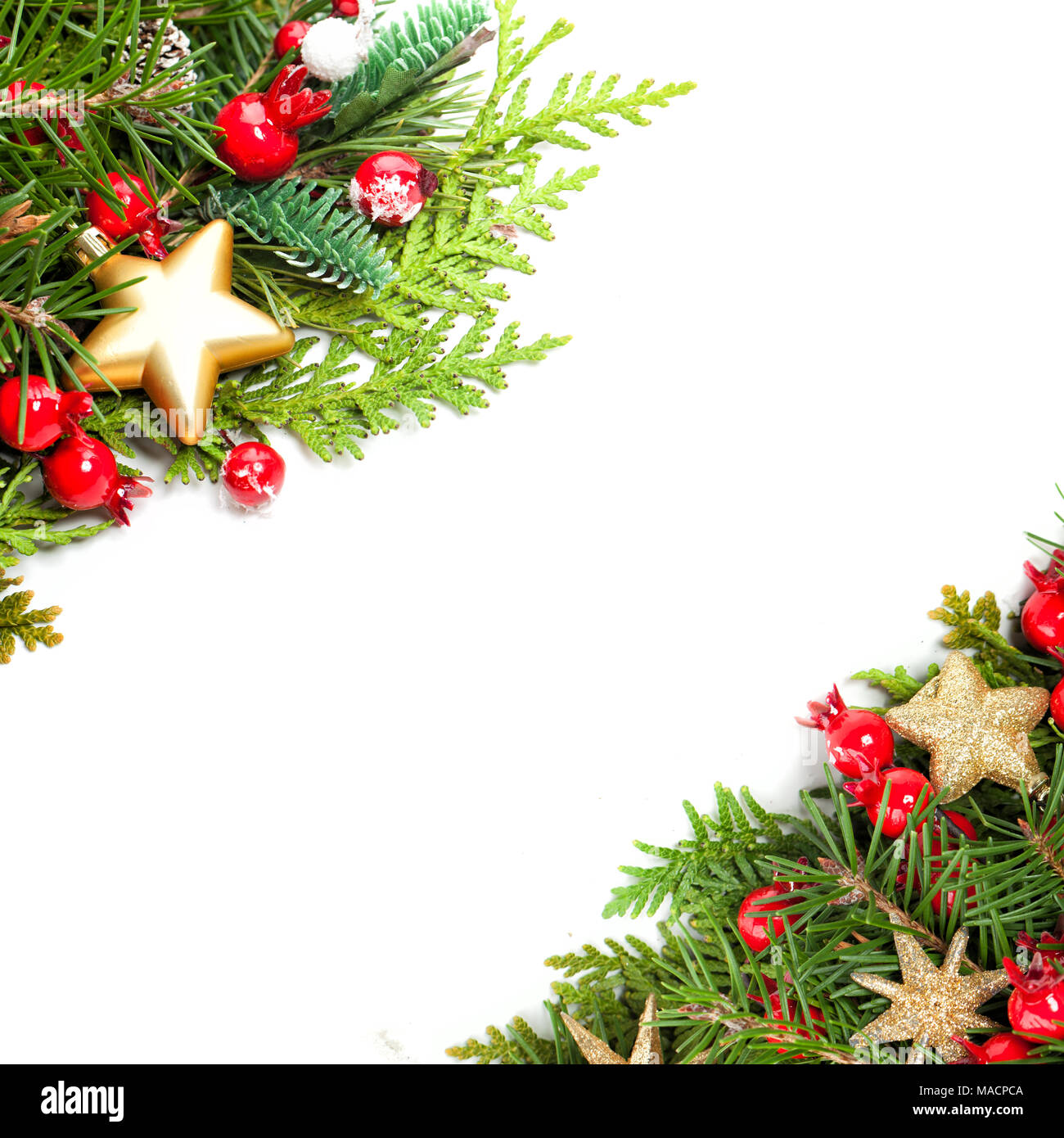 Beautiful Christmas Background with Xmas Tree Twig, Red Holly Berry ...