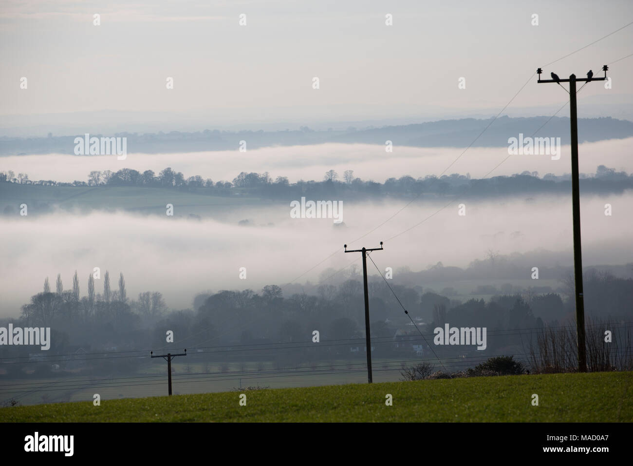 Afternoon mist in valleys in Dorset England UK GB Stock Photo
