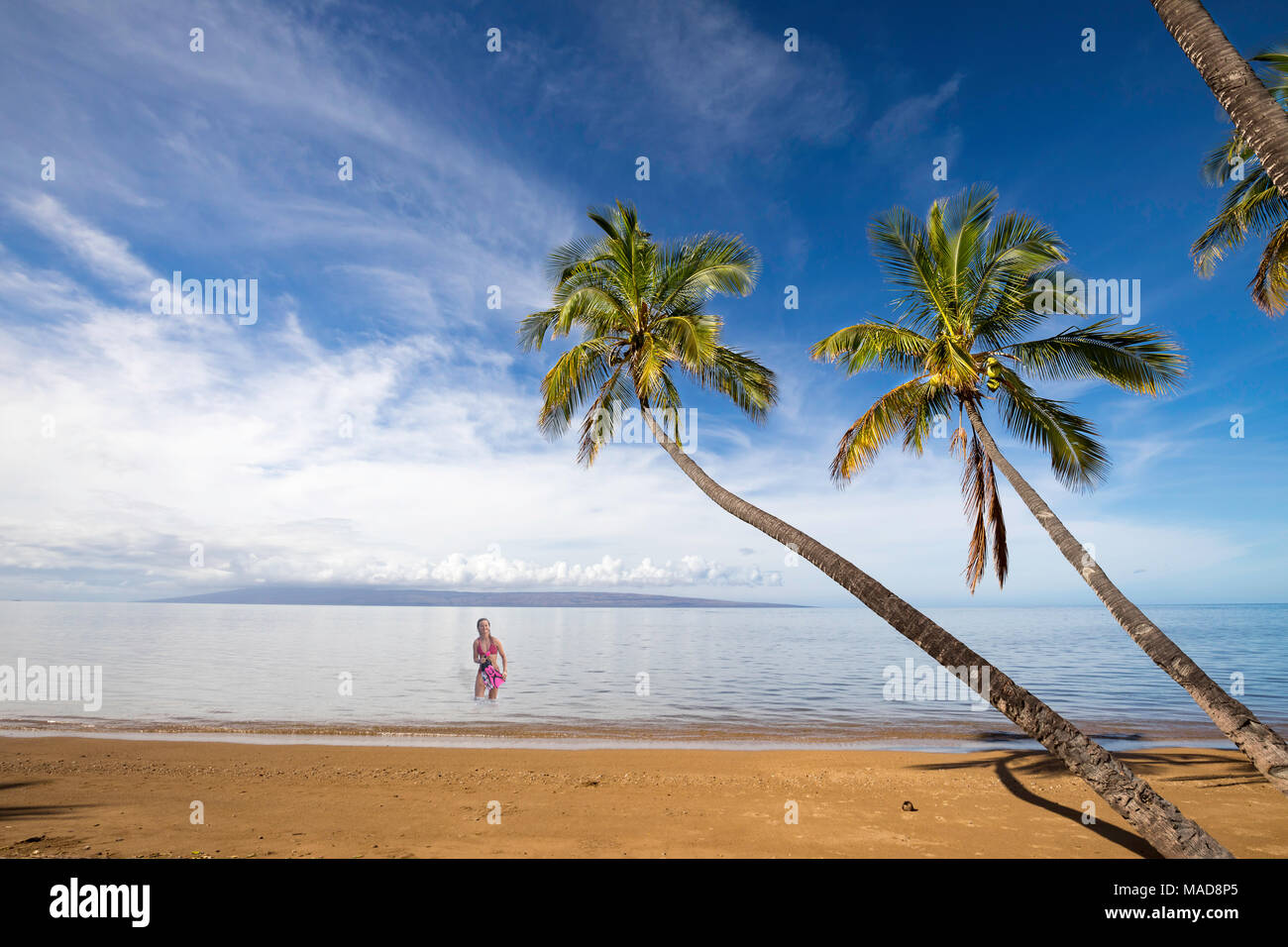 A girl (MR) comes out of the ocean with mask and snorkel onto a sandy, calm beach and palm trees at Kakahaia Beach Park, island of Molokai, Hawaii, Un - Stock Image