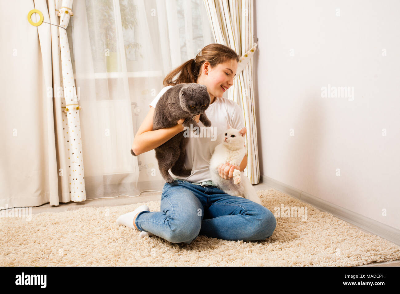 young girl is having fun with her cats - Stock Image